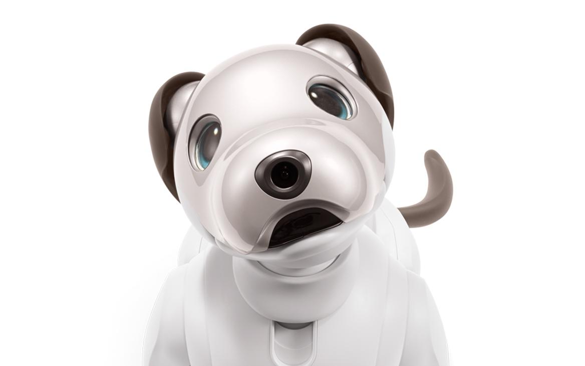 ソニー、ロボット犬「aibo」12年ぶりに発売へ 198,000円(税別)